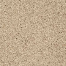 Shaw Floors Roll Special Xv824 Soft Sand 00102_XV824