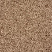 Shaw Floors Roll Special Xv824 Pebble 00701_XV824
