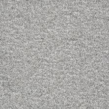 Shaw Floors Roll Special Xv845 Reflection 00500_XV845