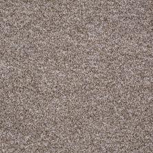 Shaw Floors Roll Special Xv845 Creek Bed 00710_XV845