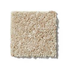 Shaw Floors Roll Special Xv863 Flax Seed 00103_XV863