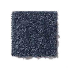 Shaw Floors Roll Special Xv863 Denim 00410_XV863