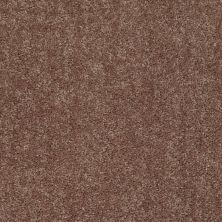 Shaw Floors Roll Special Xv863 Cattail 00702_XV863