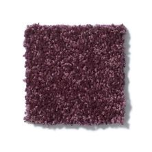 Shaw Floors Roll Special Xv863 Royal Purple 00902_XV863