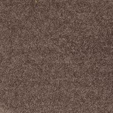 Shaw Floors Roll Special Xv865 Molasses 00710_XV865