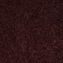 Shaw Floors Roll Special Xv865 Royal Purple 00902_XV865