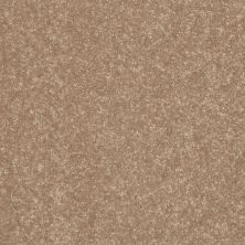 Shaw Floors Roll Special Xv866 Tassel 00107_XV866