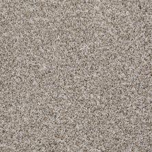 Shaw Floors Roll Special Xv879 Bran Flakes 00111_XV879