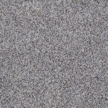 Shaw Floors Roll Special Xv879 Silver Spoon 00521_XV879