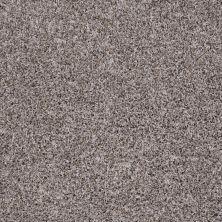 Shaw Floors Roll Special Xv879 Dried Moss 00710_XV879