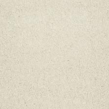 Shaw Floors Roll Special Xv921 Pearl 00102_XV921