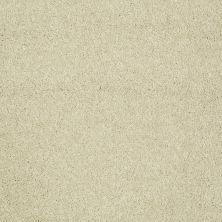 Shaw Floors Roll Special Xv921 Cowhide 00200_XV921