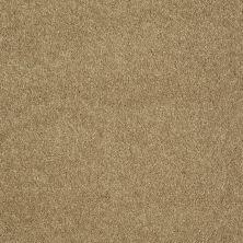 Shaw Floors Roll Special Xv921 Camel 00201_XV921