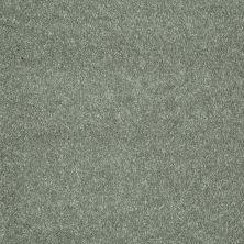 Shaw Floors Roll Special Xv921 Organic Leaf 00301_XV921