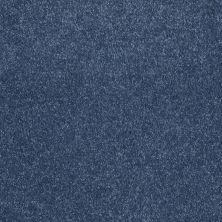 Shaw Floors Roll Special Xv921 Indigo 00402_XV921