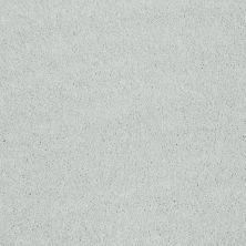 Shaw Floors Roll Special Xv921 Silver Shine 00500_XV921