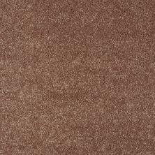 Shaw Floors Roll Special Xv921 Autumn 00600_XV921