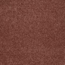 Shaw Floors Roll Special Xv921 Arabian Spice 00601_XV921