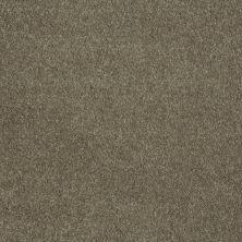 Shaw Floors Roll Special Xv921 Bark 00704_XV921