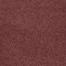 Shaw Floors Roll Special Xv921 Cherry Pie 00800_XV921