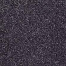 Shaw Floors Roll Special Xv921 Wisteria 00900_XV921