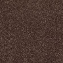 Shaw Floors Roll Special Xv930 Peppercorn 00717_XV930