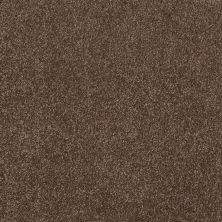 Shaw Floors Roll Special Xv930 Cocoa Powder 00718_XV930