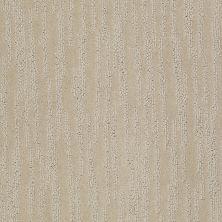 Shaw Floors Roll Special Xv987 Agate 00713_XV987