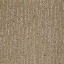Shaw Floors Roll Special Xv987 Sable 00754_XV987
