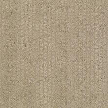 Shaw Floors Roll Special Xv988 Mushroom 00703_XV988