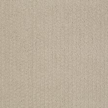 Shaw Floors Roll Special Xv988 Agate 00713_XV988