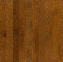 Shaw Floors Shaw Hardwoods Heathrow Sugarcane 00883_XW019