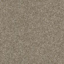 Shaw Floors Roll Special Xy158 Cameo 00103_XY158