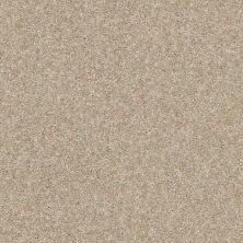Shaw Floors Roll Special Xy158 Sepia 00105_XY158