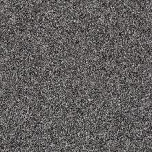 Shaw Floors Roll Special Xy158 Shadow 00502_XY158