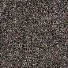 Shaw Floors Roll Special Xy176 Mushroom 00502_XY176