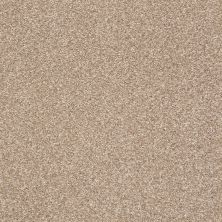 Shaw Floors Roll Special Xy232 Greige 00103_XY232