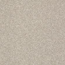Shaw Floors Roll Special Xy232 Alpaca 00500_XY232