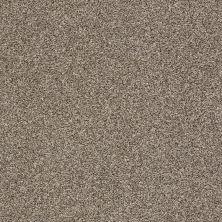 Shaw Floors Roll Special Xy232 Dappled 00501_XY232