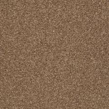 Shaw Floors Roll Special Xy232 Spruce 00702_XY232