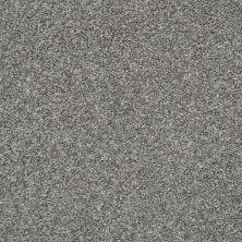 Shaw Floors Roll Special Xz004 Sparrow 00504_XZ004