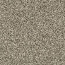 Shaw Floors Roll Special Xz004 Clay 00701_XZ004