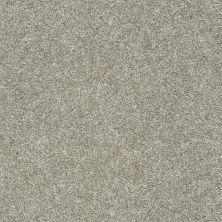 Shaw Floors Roll Special Xz005 London Fog 00501_XZ005