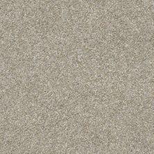 Shaw Floors Roll Special Xz005 Misty Harbor 00510_XZ005