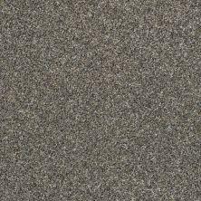 Shaw Floors Roll Special Xz005 Granite Dust 00511_XZ005