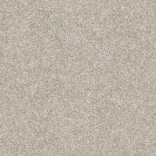Shaw Floors Value Collections Xz010 Net Oatmeal 00100_XZ010