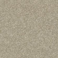 Shaw Floors Value Collections Xz010 Net Latte 00700_XZ010