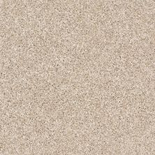 Shaw Floors Value Collections Xz141 Net Sand Castle 00100_XZ141