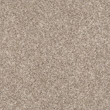 Shaw Floors Value Collections Xz141 Net Neutral Ground 00101_XZ141