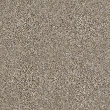Shaw Floors Value Collections Xz141 Net Pebble Walk 00102_XZ141